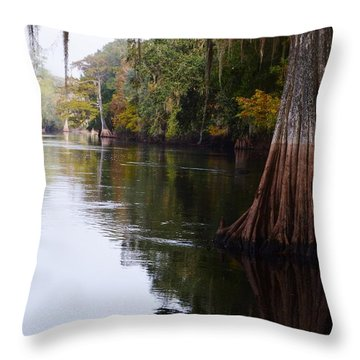Cypress High Water Mark Throw Pillow by Warren Thompson