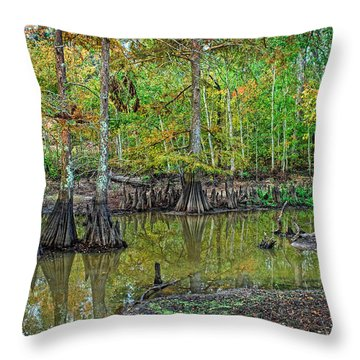 Cypress In Autimn Throw Pillow