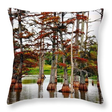 Cypress In Autumn Throw Pillow