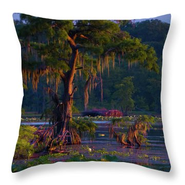 Cypress In The Sunset Throw Pillow