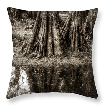 Cypress Island Throw Pillow