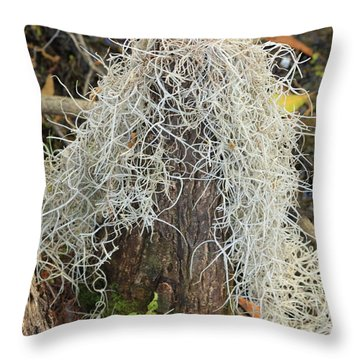 Cypress Knee Draped With Moss Throw Pillow
