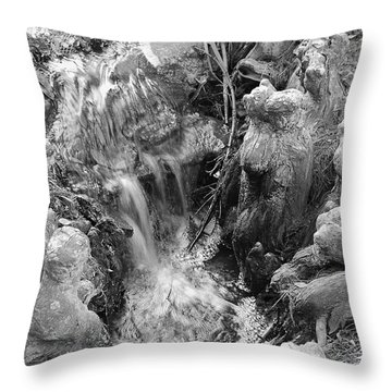 Cypress Knees II Throw Pillow by Suzanne Gaff