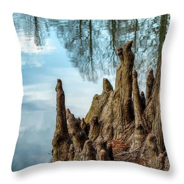 Throw Pillow featuring the photograph Cypress Knees by James Barber