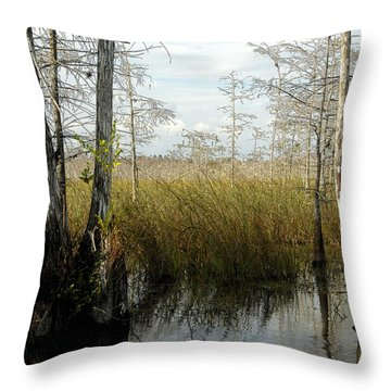 Cypress Landscape Throw Pillow by David Lee Thompson