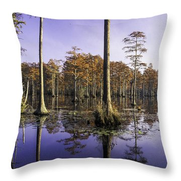 Cypress Pond 05 Throw Pillow