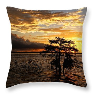 Cypress Sunset Throw Pillow by Judy Vincent