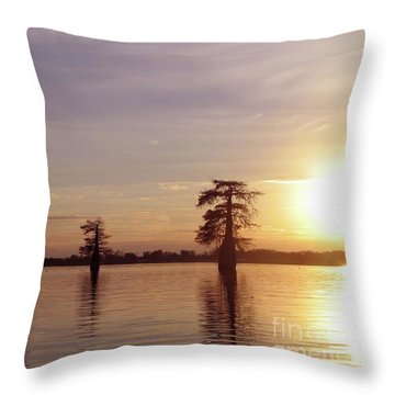 Cypress Sunset Throw Pillow by Sheila Ping