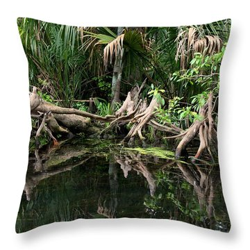 Throw Pillow featuring the photograph Cypress Swamp  by Barbara Bowen