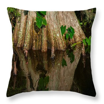 Cypress Swamp Throw Pillow by Carolyn Dalessandro