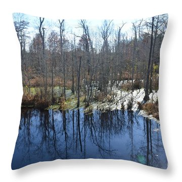 Cypress Swamp Throw Pillow by Gordon Mooneyhan