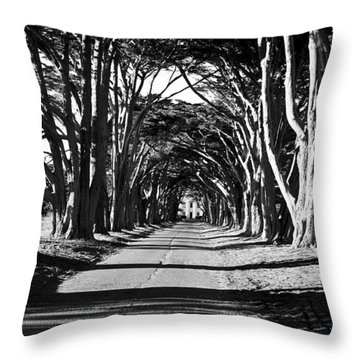 Cypress Tree Tunnel Throw Pillow