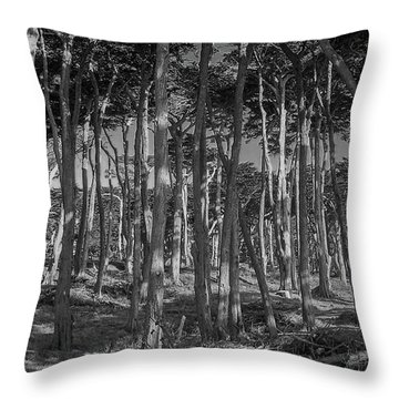 Cyprus On Point Lobos Throw Pillow