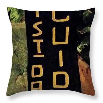 Throw Pillow featuring the digital art Da Guido - Magliano, Italy by Joseph Hendrix