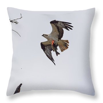 Dad Brought Supper Throw Pillow