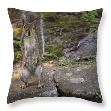 Daddy Jr Throw Pillow