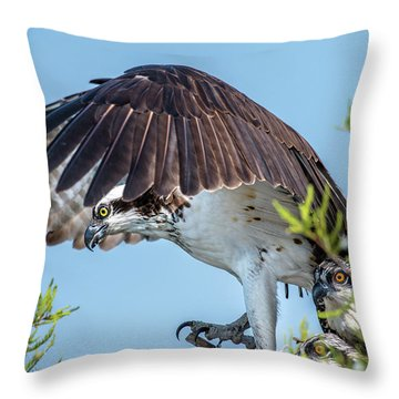 Daddy Osprey On Guard Throw Pillow