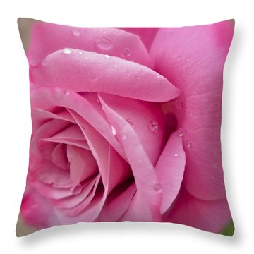 Daddy's Rose Throw Pillow by Gwyn Newcombe