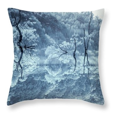 Daejeon Lohas 3 Throw Pillow