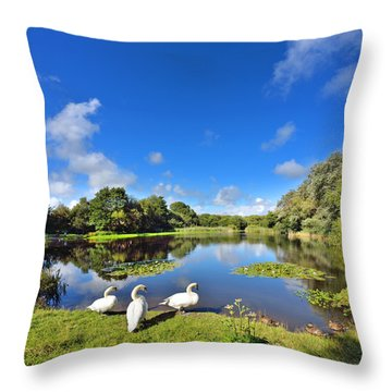 Dafen Pond Throw Pillow
