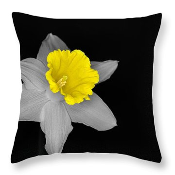 Daffo The Dilly Isolation Throw Pillow