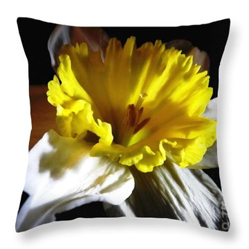 Throw Pillow featuring the photograph Daffodil 2 by Rose Santuci-Sofranko