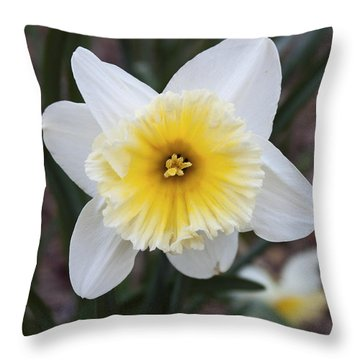 Throw Pillow featuring the photograph Daffodil At Black Creek by Jeff Severson