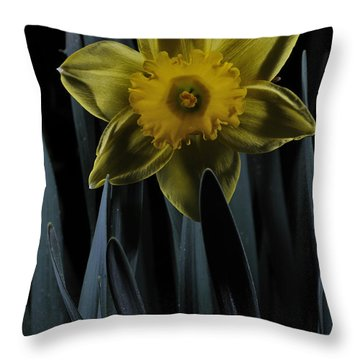 Daffodil By Moonlight Throw Pillow