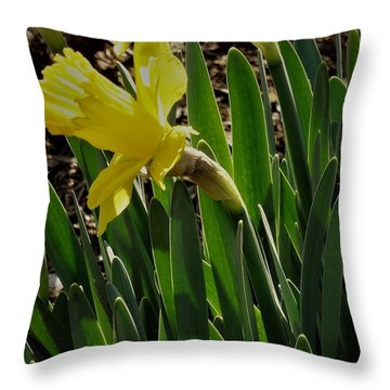 Daffodil Crown Throw Pillow