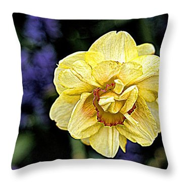 Throw Pillow featuring the photograph Daffodil Dallas Arboretum by Diana Mary Sharpton