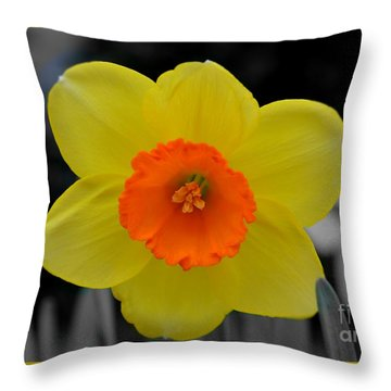 Daffodil Delight  Throw Pillow