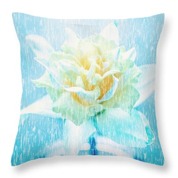 Throw Pillow featuring the photograph Daffodil Flower In Rain. Digital Art by Jorgo Photography - Wall Art Gallery