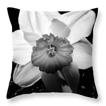Daffodil In Springtime Throw Pillow by Michelle Calkins