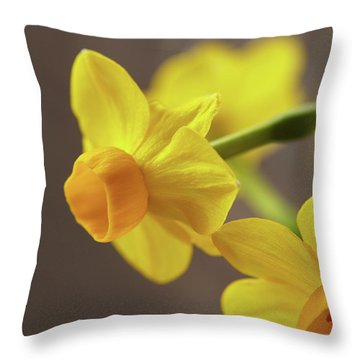 Daffodil Sunrise Throw Pillow