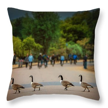 Daffy Road Throw Pillow by Wallaroo Images