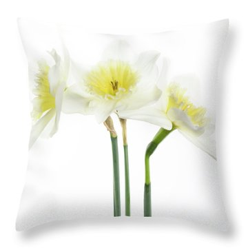 Dafs Throw Pillow by Rebecca Cozart