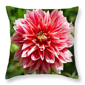 Dahlia 3 Throw Pillow