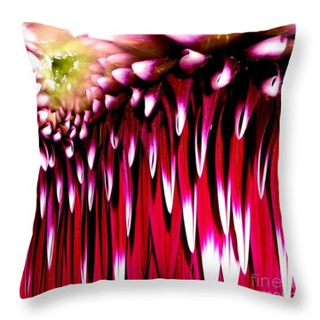 Dahlia Abstract Throw Pillow by Rose Santuci-Sofranko