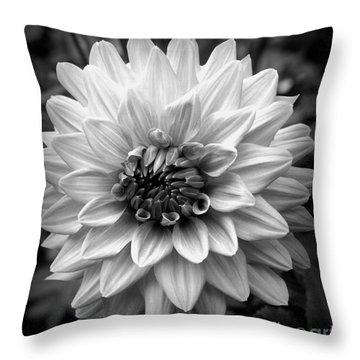 Dahlia Art Throw Pillow