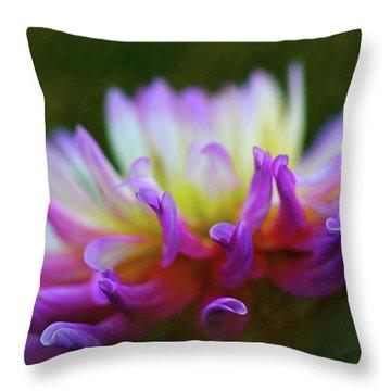 Dahlia Bloom  Throw Pillow