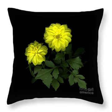 Dahlia Throw Pillow by Christian Slanec
