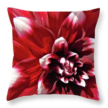 Dahlia Defined Throw Pillow
