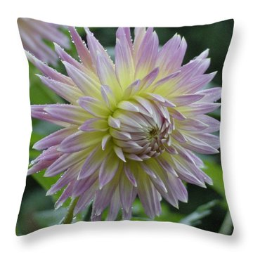Dahlia Delight Throw Pillow by Shirley Heyn