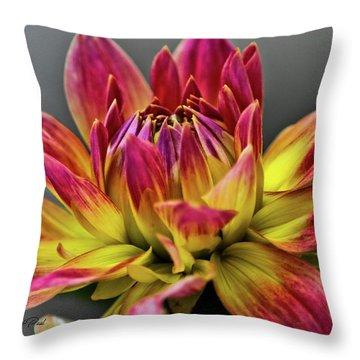Dahlia Flame Throw Pillow by Joann Copeland-Paul