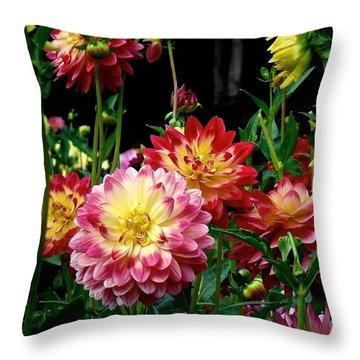 Dahlia Garden Time  Throw Pillow