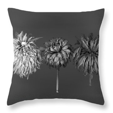 Dahlia Grouping 1 Throw Pillow