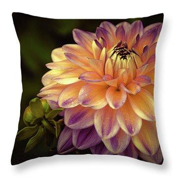 Dahlia In Peach And Lavender Throw Pillow