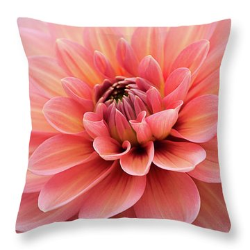 Throw Pillow featuring the photograph Dahlia In Pink And Peach by Julie Palencia