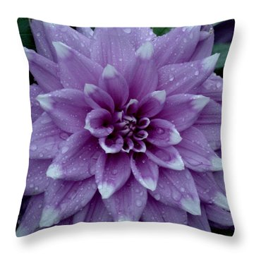 Dahlia In Rain Throw Pillow by Shirley Heyn