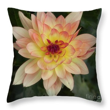 Dahlia 'keith H.' Throw Pillow